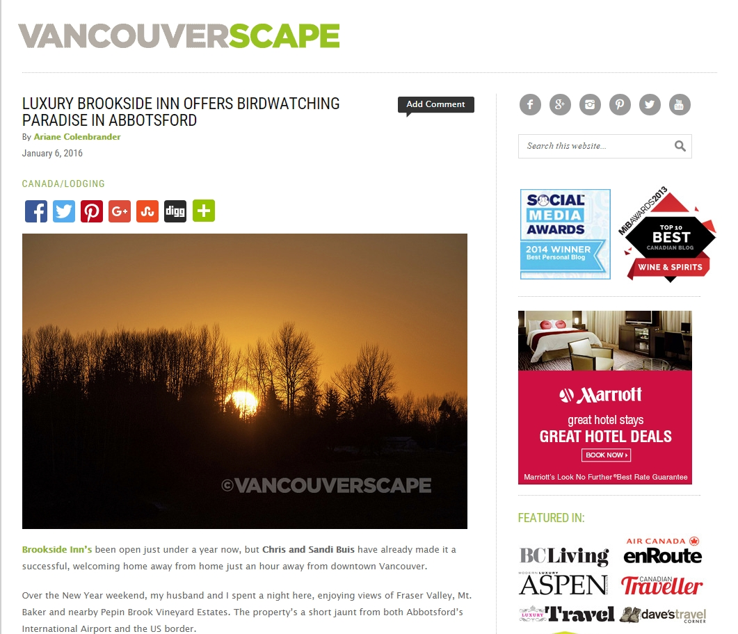 Luxury Brookside Inn Offers Birdwatching Paradise in Abbotsford  Vancouver Scape